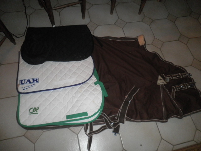 Matos equitation ( selle , tapis , gogue) P2130010