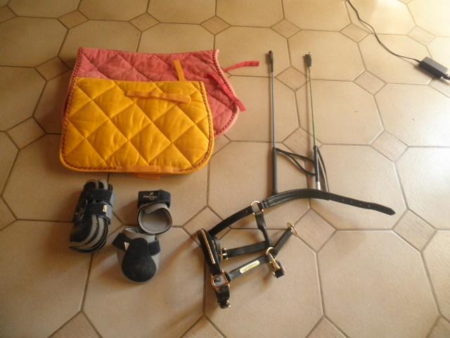 Matos equitation ( selle , tapis , gogue) Pa090016