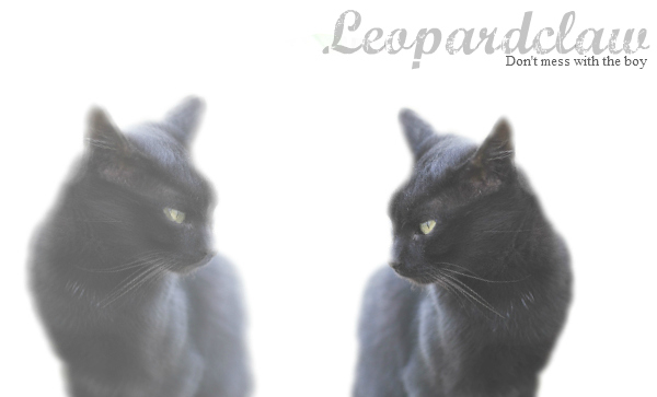 My love is gone... [Leopardclaw] 40160610