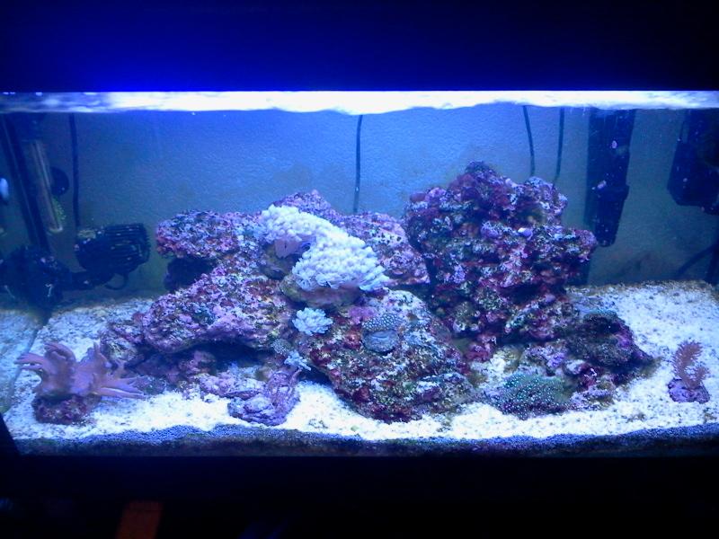 120 litres marin[adim] 2011-114