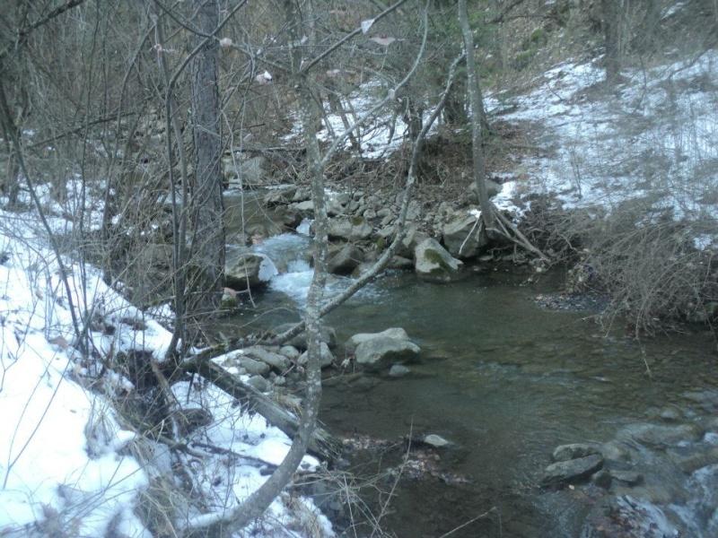 plombée pour cette rivière 41895710