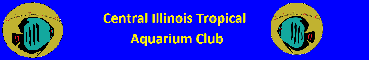 Central Illinois Tropical Aquarium Club