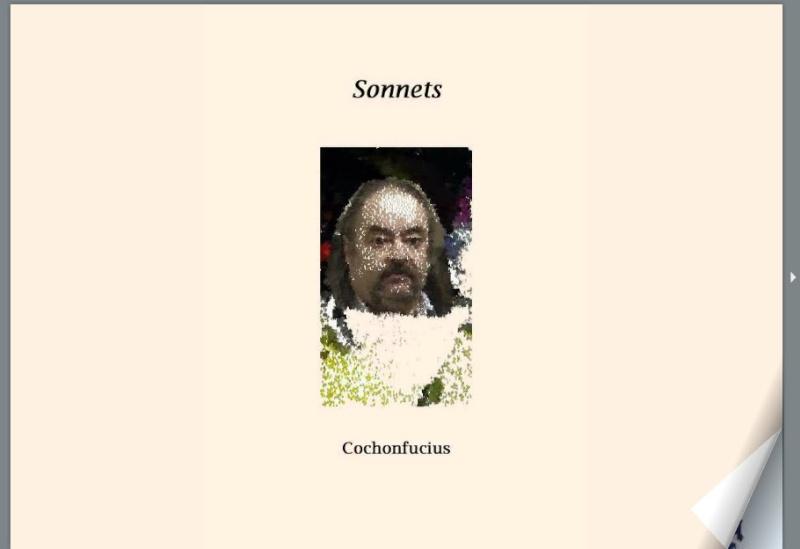 Poèmes de Cochonfucius Cocho10