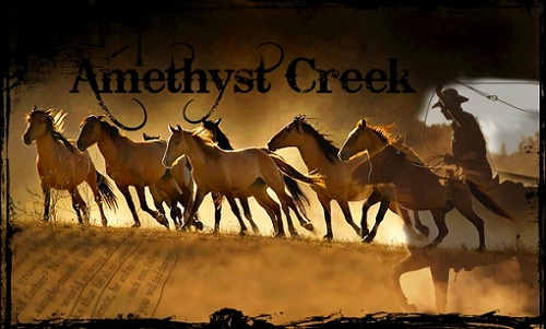 Amethyst Creek Header12