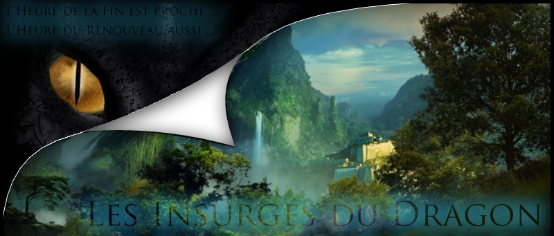 Les Insurgés du Dragons