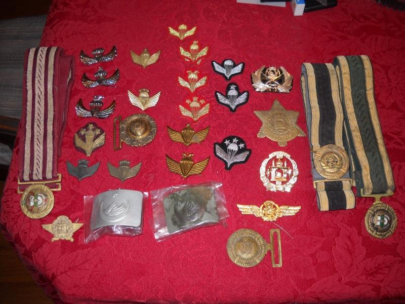 ANA badges Dscn1810