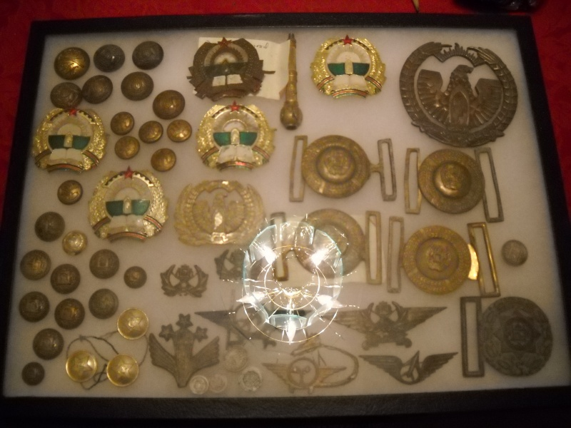 ANA badges Dscn1812