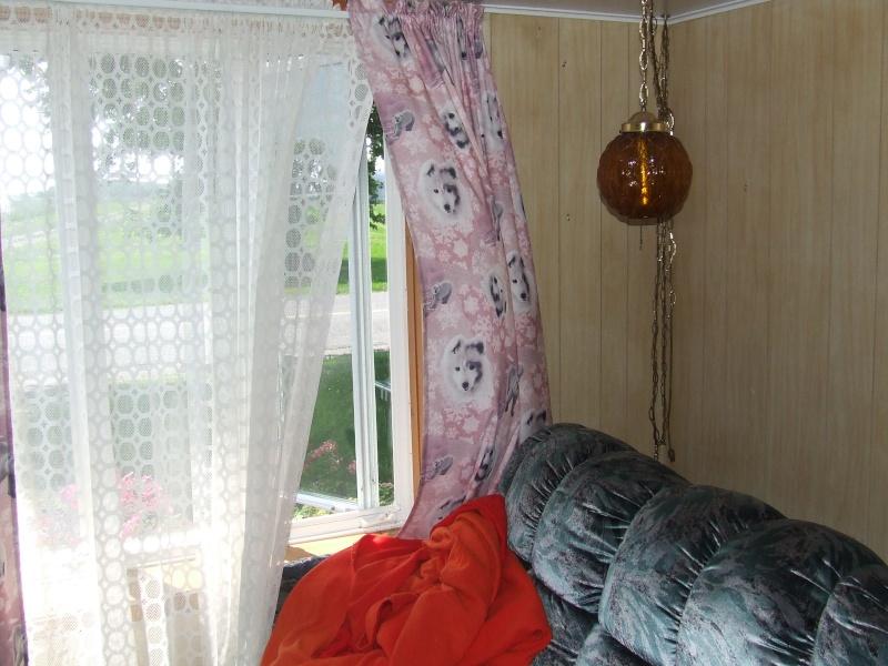 Le petit salon d'Alibouba 1_66910