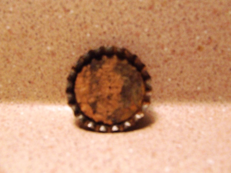 Un bouchon fortier Dscf5460