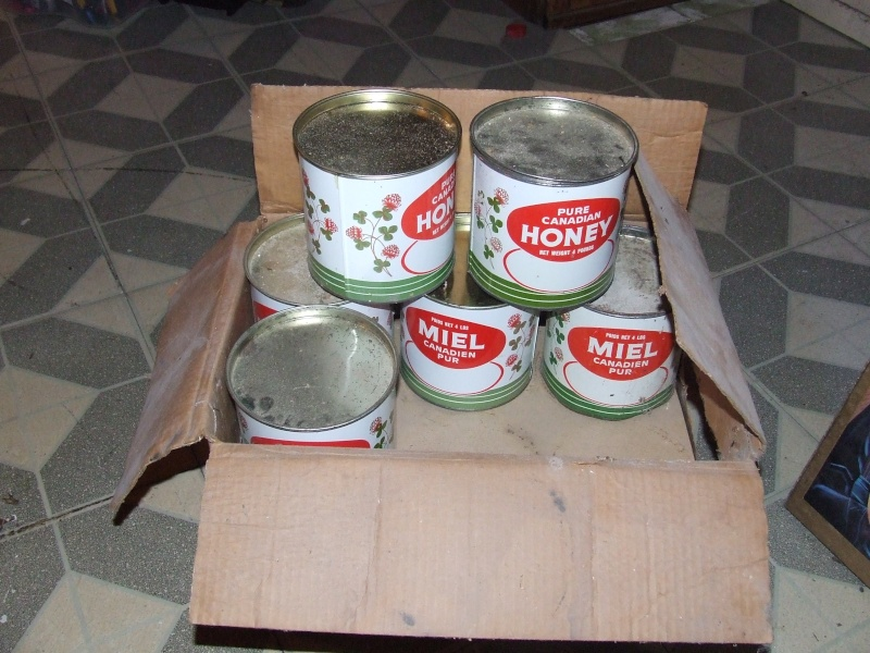 Miel canadien pur ( boîte ) Dscf5515