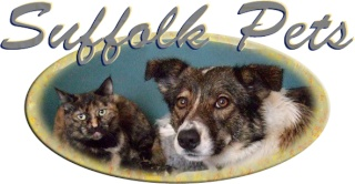 Suffolk Pets