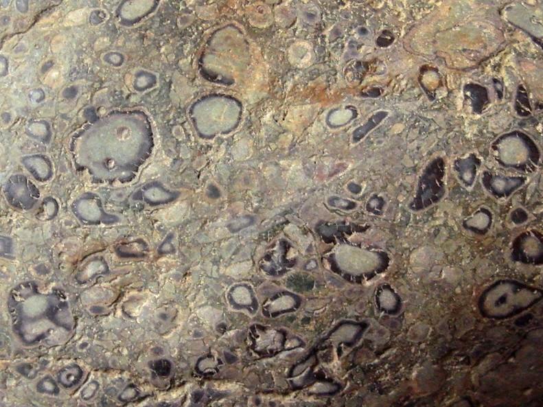 Yuhua Stone (Rain Flower Stone) - Page 3 Brecci11