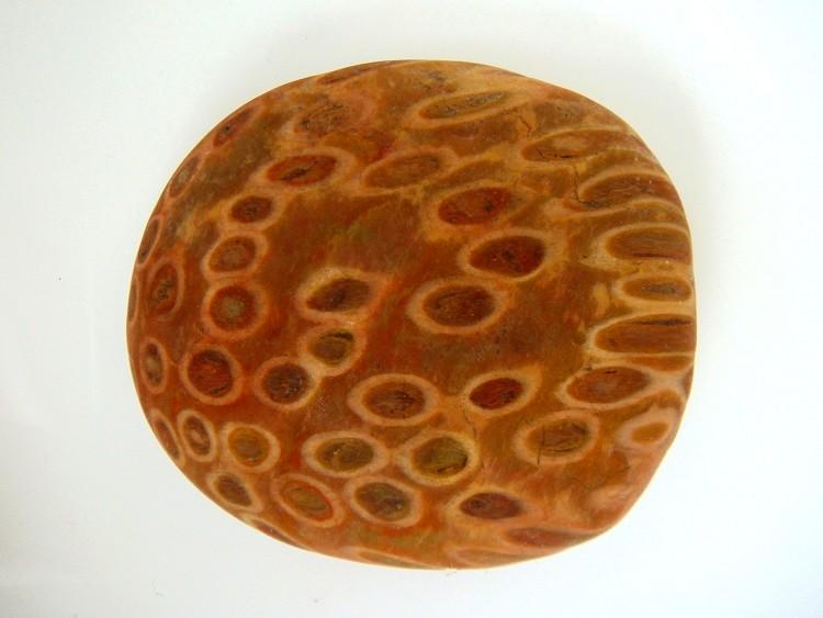 Yuhua Stone (Rain Flower Stone) - Page 3 Fossil29