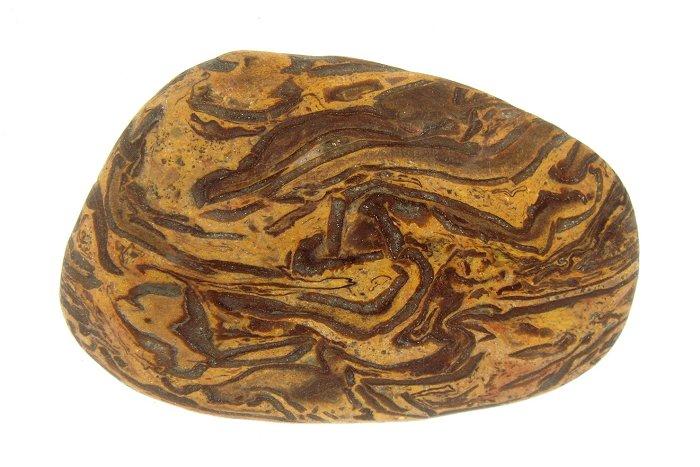 Yuhua Stone (Rain Flower Stone) - Page 3 Fossil34