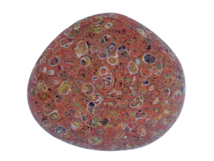 Yuhua Stone (Rain Flower Stone) - Page 3 Fossil41