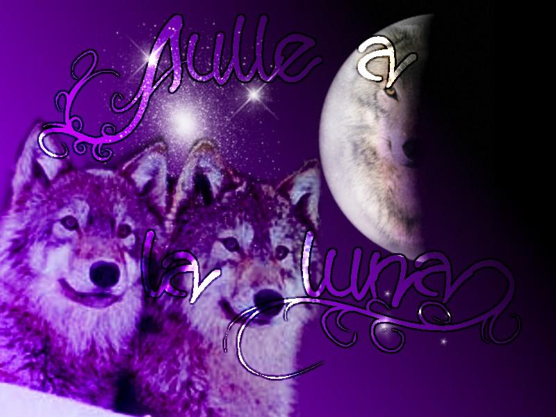 aulle a la luna