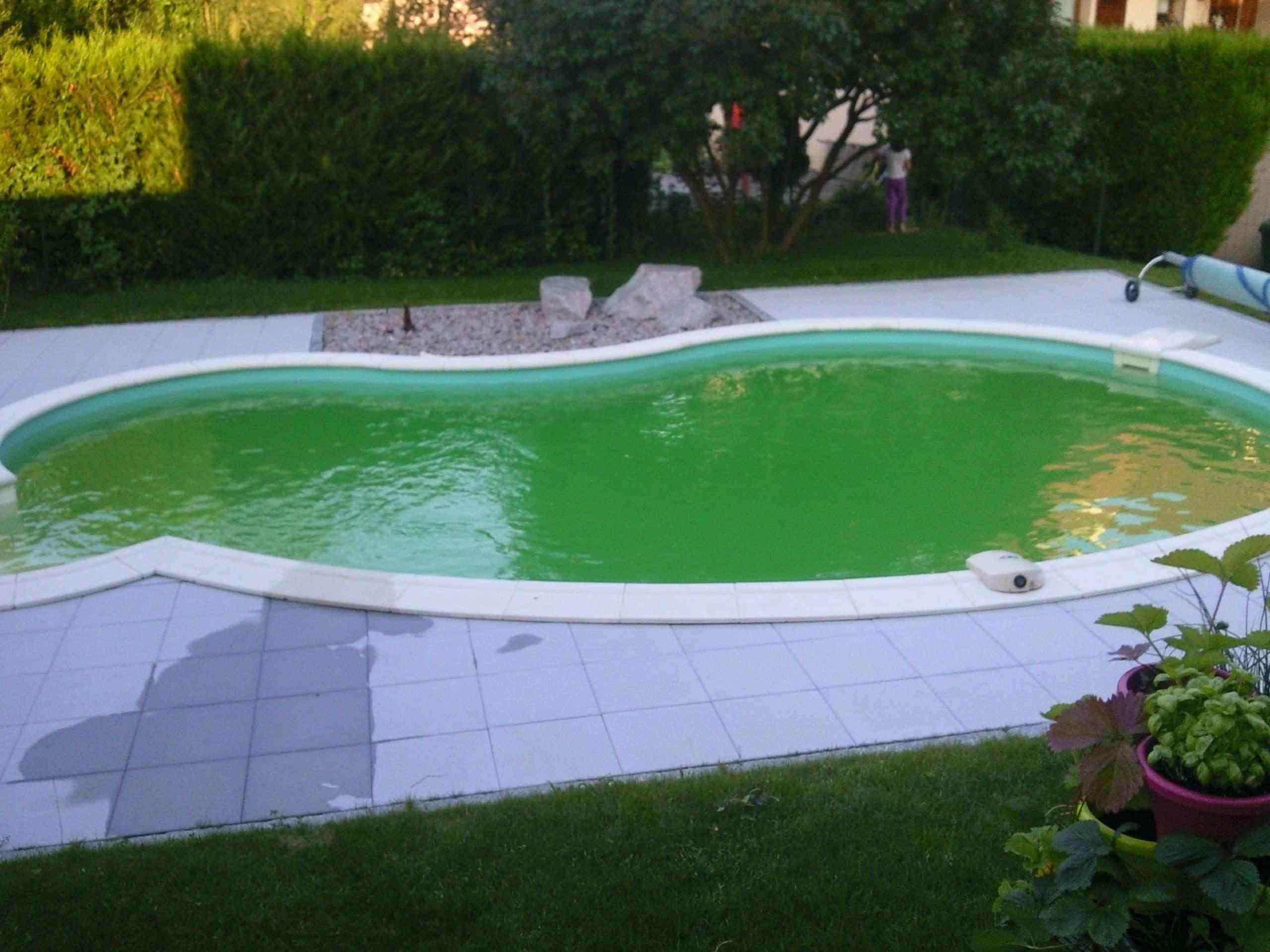 eau verte! Photo015