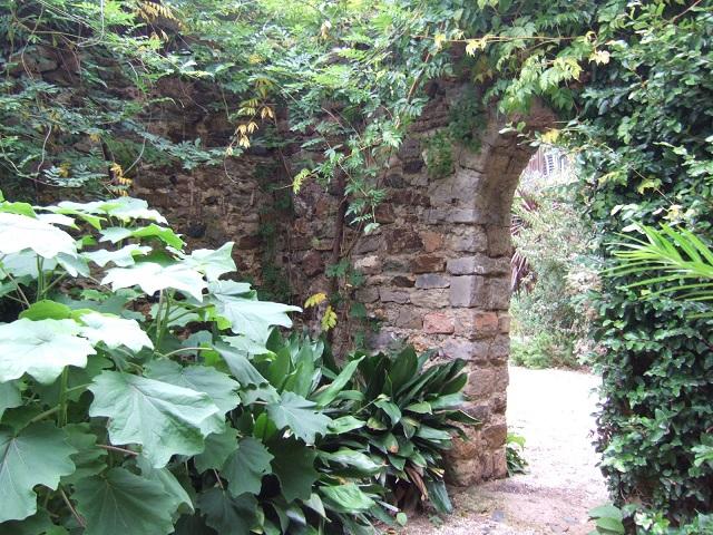 (83) Parc Saint-Bernard et Villa Noailles - Hyères Dscf1631