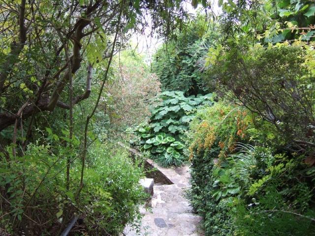 (83) Parc Saint-Bernard et Villa Noailles - Hyères Dscf1726