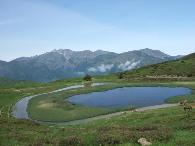 (65) balades dans les Hautes-Pyrénées Dscf9212