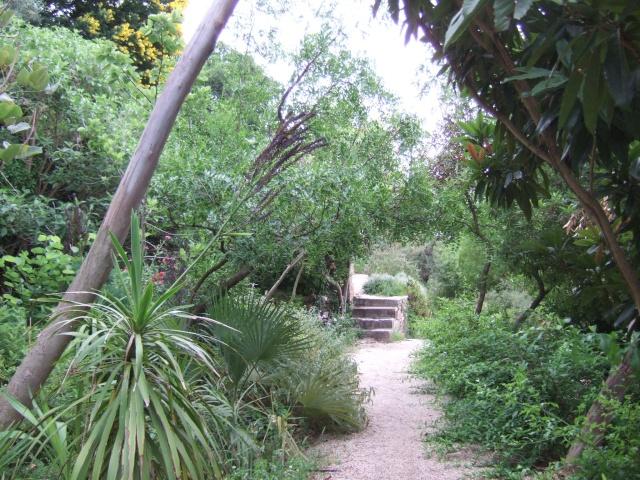 (83) Parc Saint-Bernard et Villa Noailles - Hyères Dscf9919