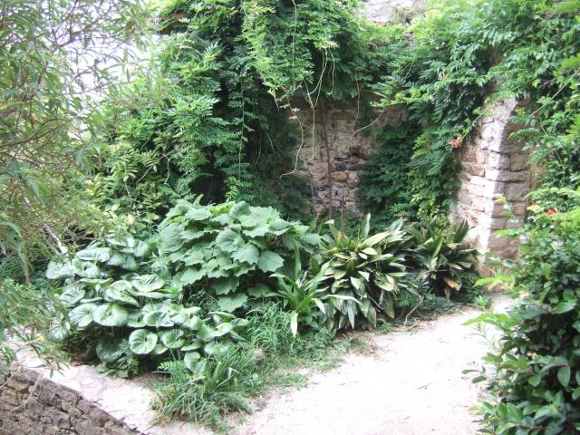 (83) Parc Saint-Bernard et Villa Noailles - Hyères Dscf9920