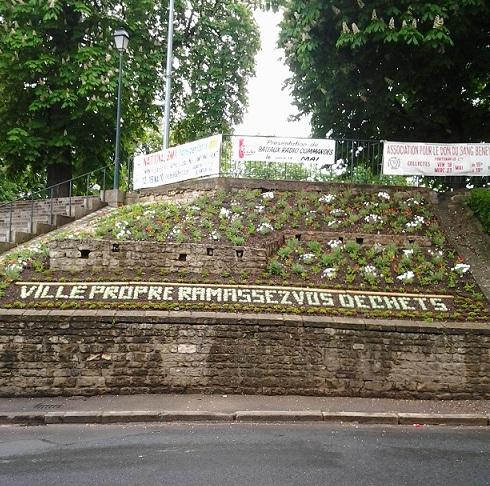 Le civisme par les plantes Photo011