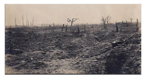 RESTAURATION D'UNE CORNEMUSE AYANT PARTICIPE A LA GRANDE GUERRE 1914/1918 1210