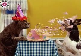 C'est mon anniversaire !!!!!! - Page 2 Images11