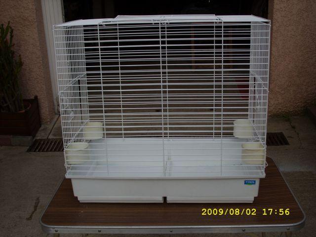 Comportement incompréhensible perruche (cage avec nid) Cage10