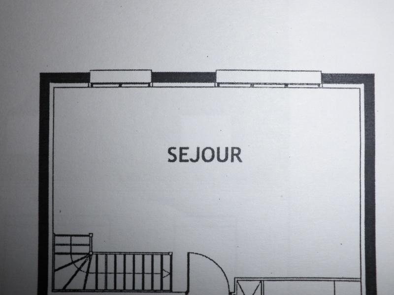 aménagement salon/salle à manger P3100314