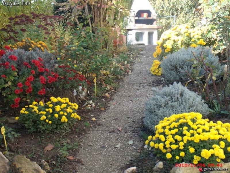 Mon jardin extérieur Gbpix_19