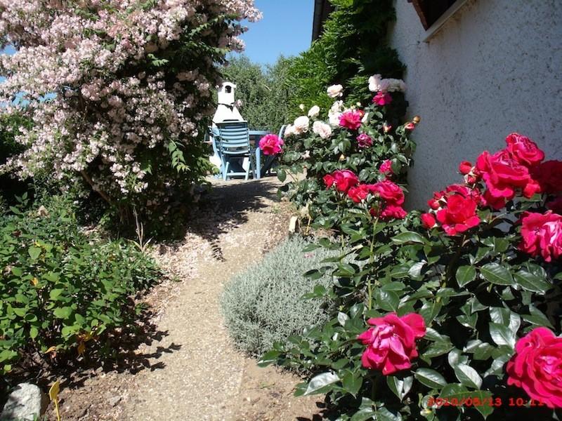 Mon jardin extérieur Gedc2510