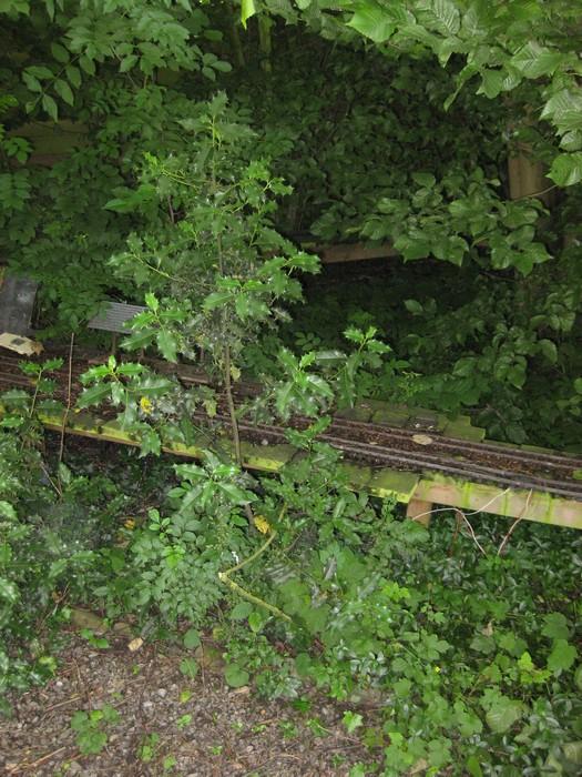 les Pelican Rail Road .. train de jardin en G Prr_ho10