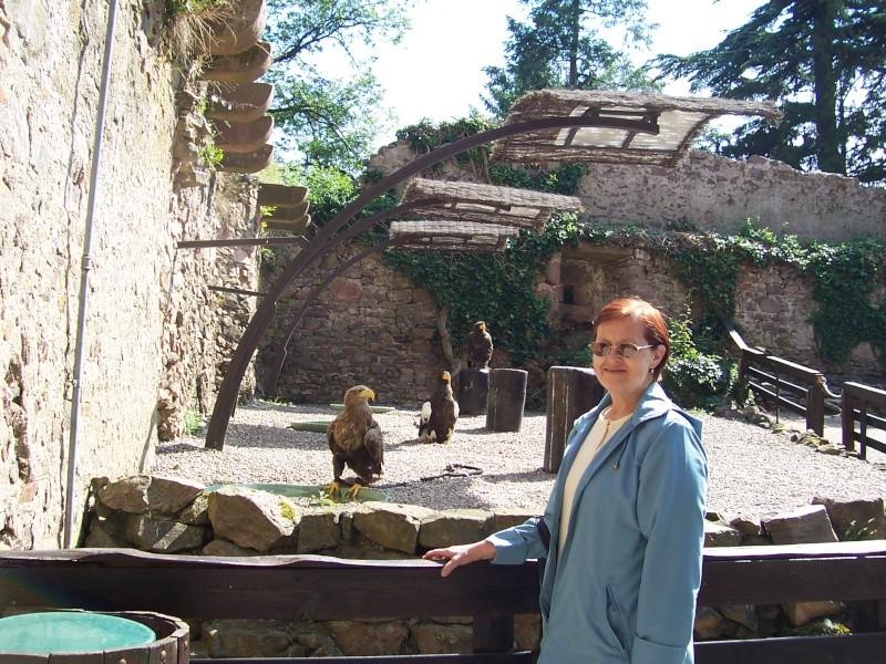 Quelles photos de mon mini-trip en Alsace - Page 2 Alsace37