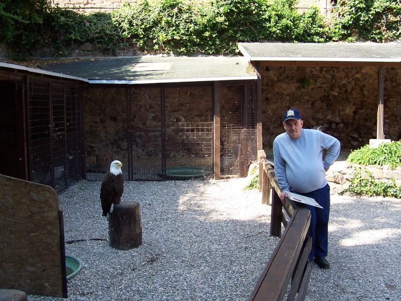 Quelles photos de mon mini-trip en Alsace - Page 2 Alsace39