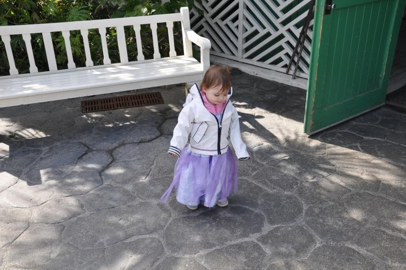 Robe de princesse - Page 6 Ascens24
