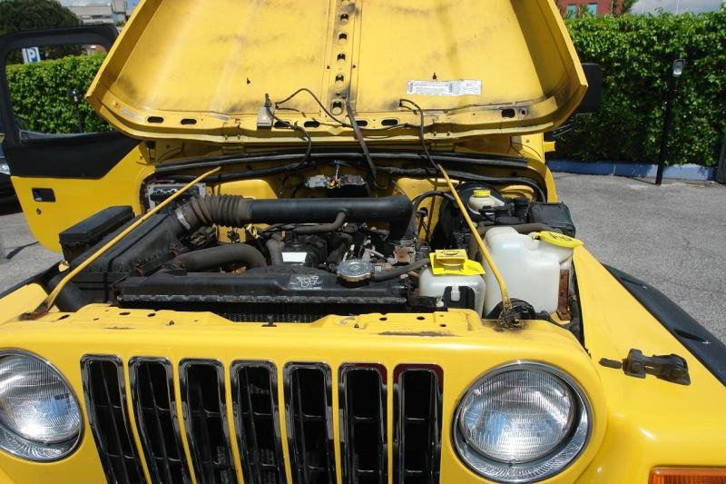 Devo raccontarvi una lunga storia di amore e di ex....e di jeeps 311