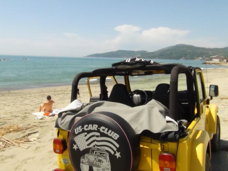 Surf Safari... 510