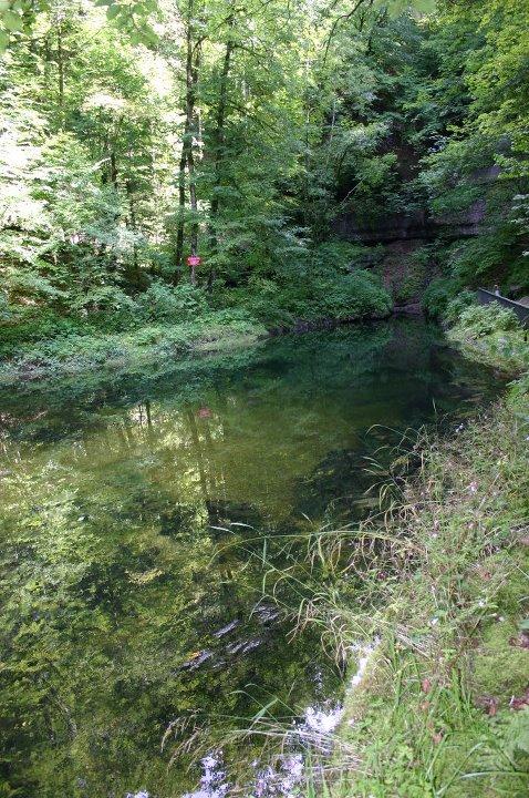Vos plus belles rencontres avec la nature 28489910