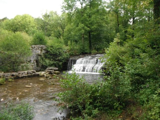 Vos plus belles rencontres avec la nature Cascad10