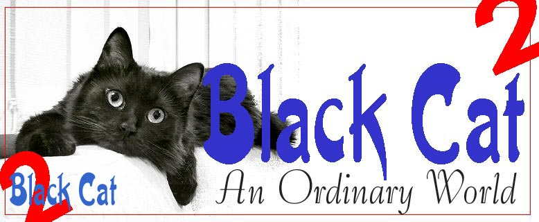 Black Cat 2 - An Ordinary World