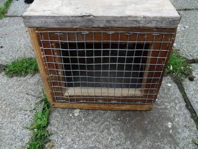 Fabrication d'une boite avec piège x destinée a la régulation d'une fouine Boite_20