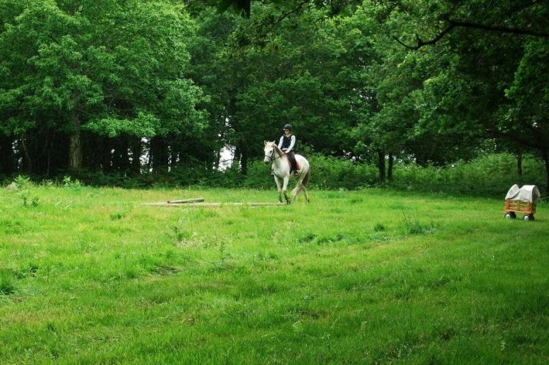 Cours d'équitation → Kermat ♥ 40357010