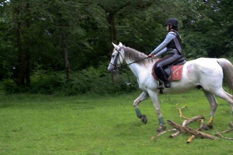Cours d'équitation → Kermat ♥ 47349410
