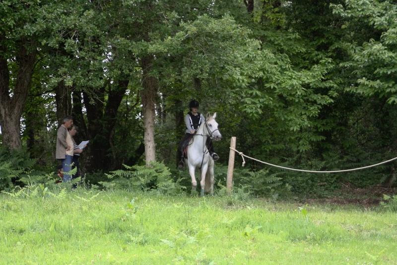 Cours d'équitation → Kermat ♥ 47429110