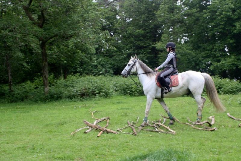 Cours d'équitation → Kermat ♥ 47713110