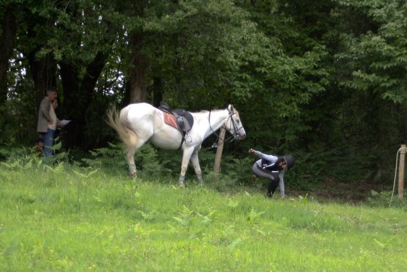 Cours d'équitation → Kermat ♥ 47770710