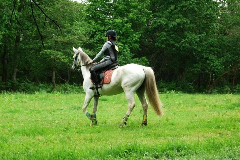 Cours d'équitation → Kermat ♥ 59883511