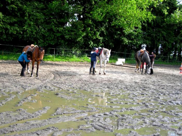 Cours d'équitation → Kermat ♥ - Page 2 Prip_811